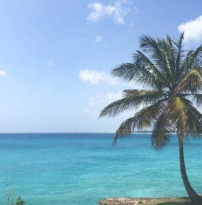 Buscar un coche de alquiler en Barbados