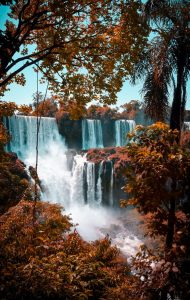Buscar un coche de alquiler en Argentina